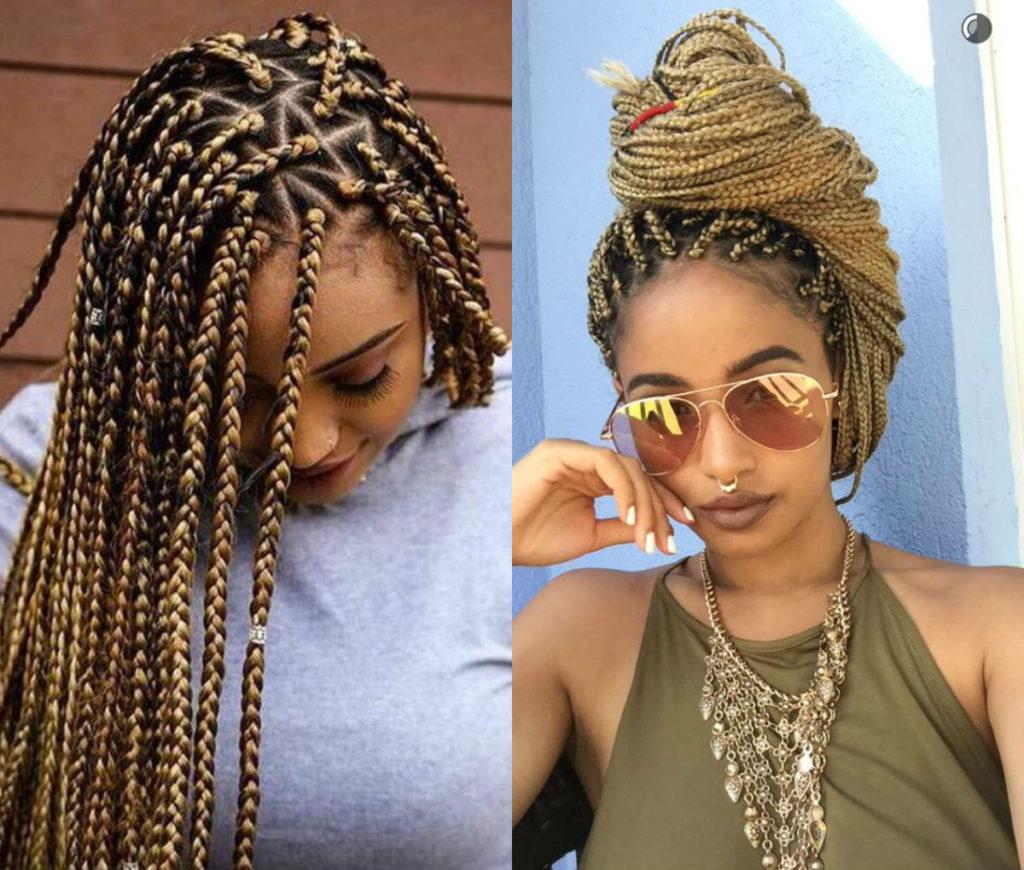 Long braided hairstyles trends 2020 box braids 2