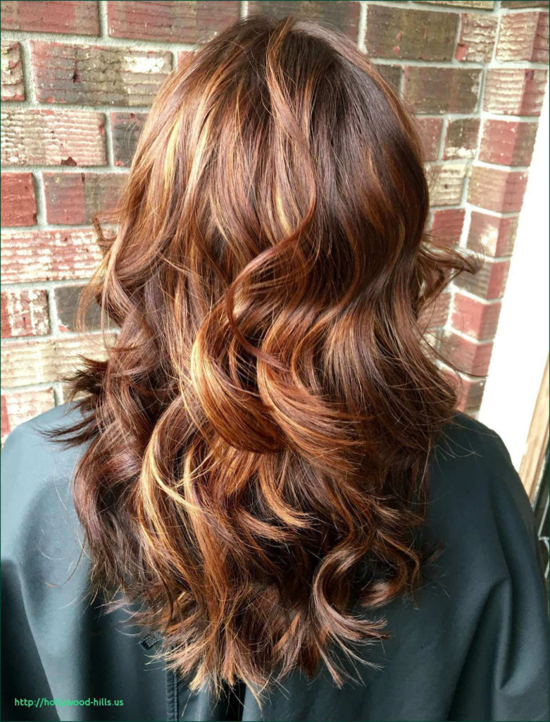 Long Highlights Hairstyles trends 2020 chestnut brown hair color 1
