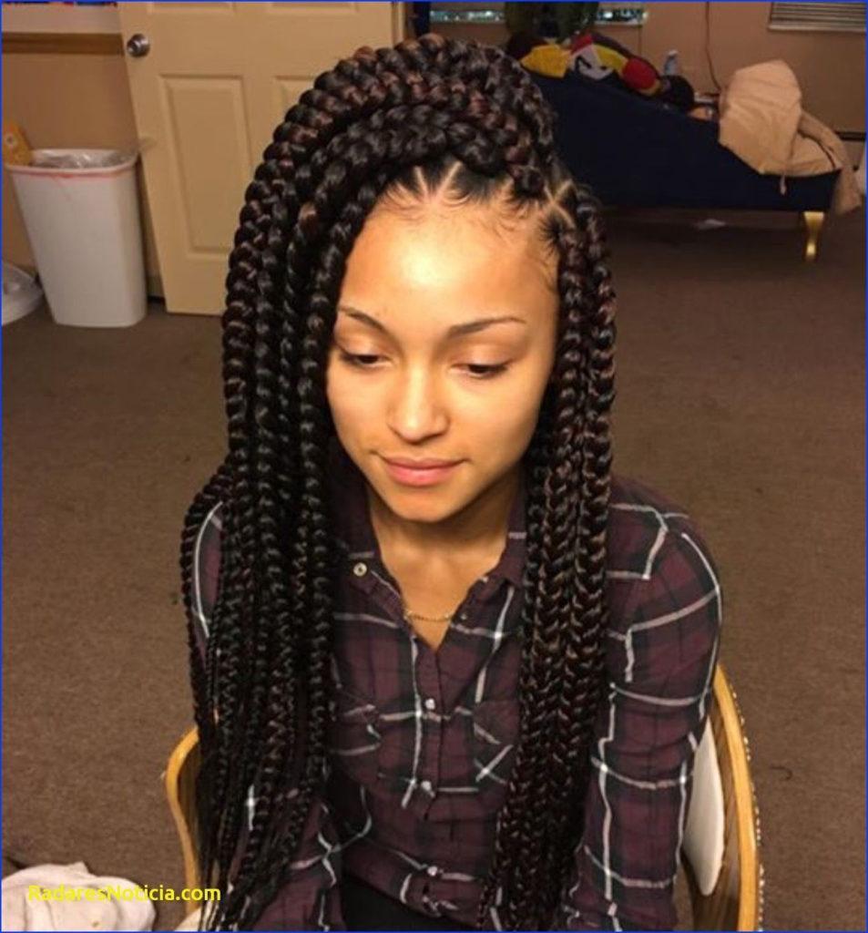 Short braided hairstyles trends 2020 brown box braids 1