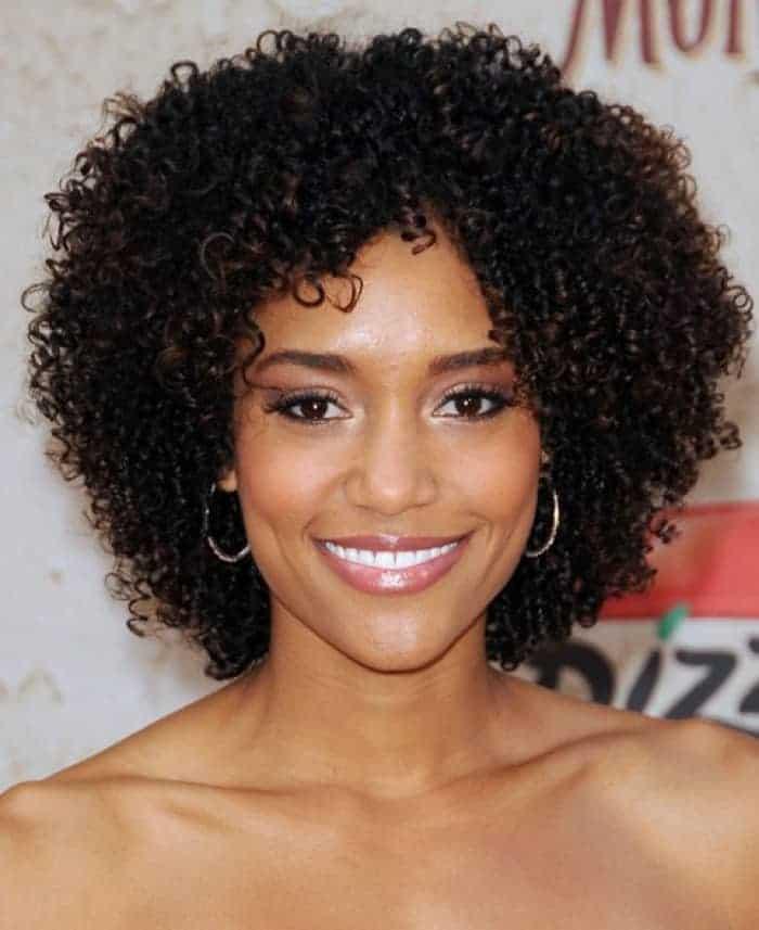 Short Curly Braids Hairstyles 1