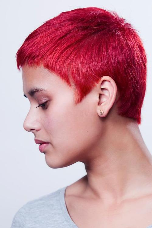 Super Short Red Cut