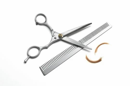 Thinning scissors and fine comb