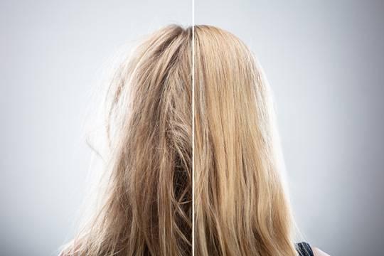 hair bixiplasty composition